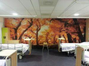 Fotoprint op behandelkamer
