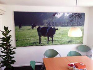 Fotopaneel groot lerarenkamer