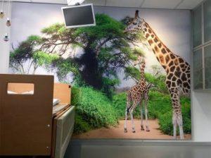Fotowand behandelkamer