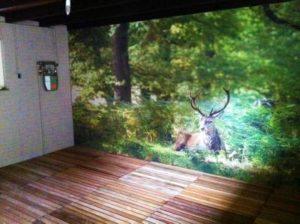 Fotowand saunaruimte geluiddempend
